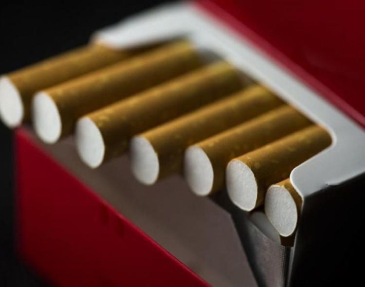 MDC-FPU  Journalisme d'investigation et bonne gouvernance locale : « La corruption dans les circuits de distribution du tabac à Sfax »