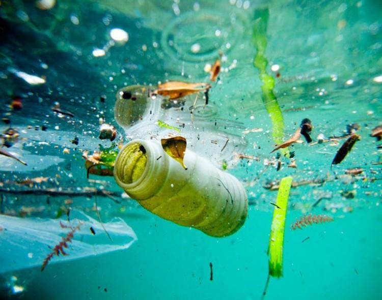MDC-FPU  Publication de l'enquête Monia Trimeche : pollution du golfe de Monastir : dégâts sur l'environnement et absence de solutions