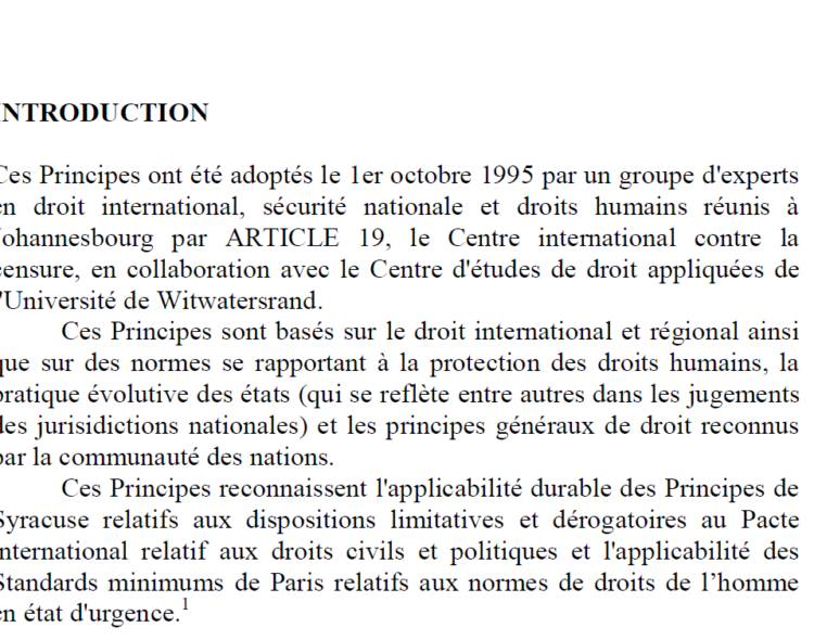 Principes de Johannesburg - Article 19